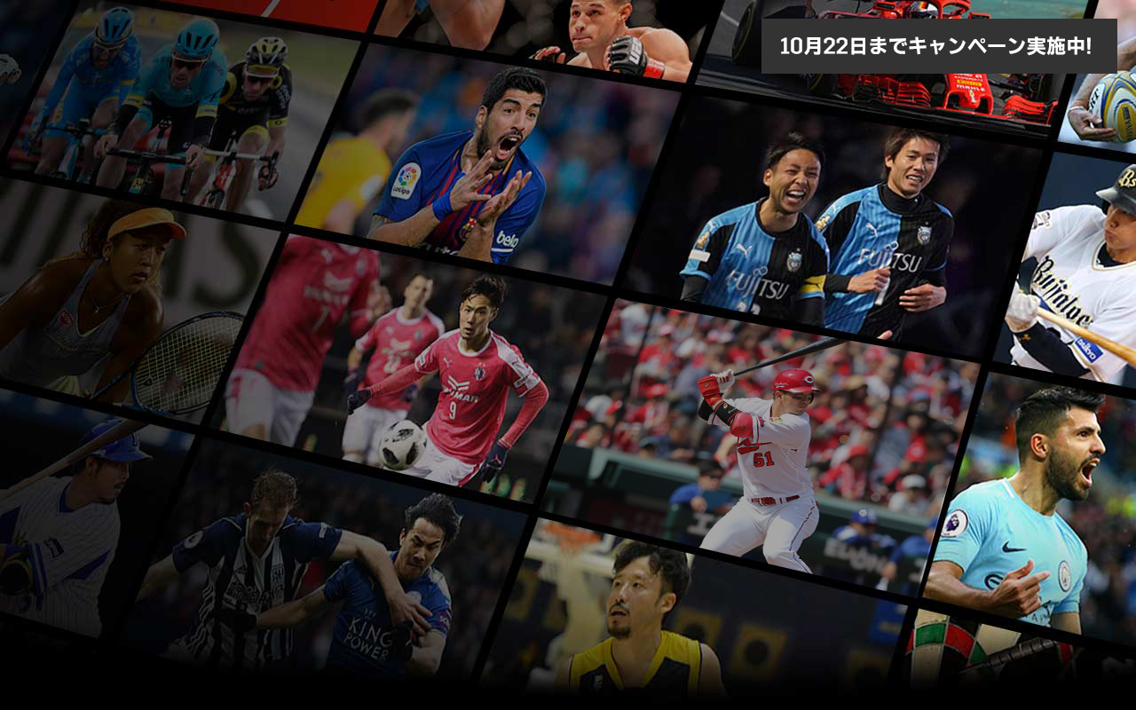 JP Grid showing sports played in multiple leagues